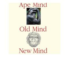 Buy Ape Mind, Old Mind, New Mind Book