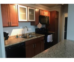 Luxury 1 bedroom with a stunning view of downtown