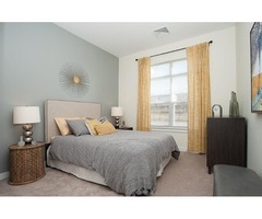 2Br/2BA -1 Month Free - Near Route 1 and market