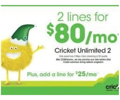 GET 2 LINES FOR $80