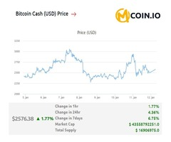 Get Latest News of Current Bitcoin Cash Price at MCoin