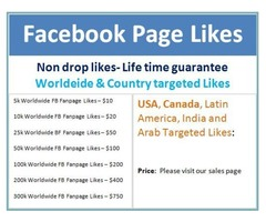 Buy Facebook Page Likes – Worldwide and Country Targeted