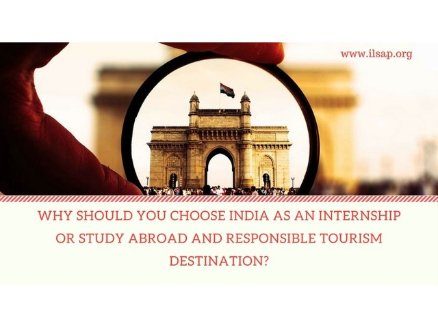 Apply For Internship in India to Create a Web Of The Professional Network   free-classifieds-usa.com