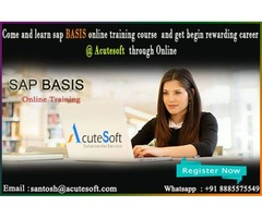 sap basis online course