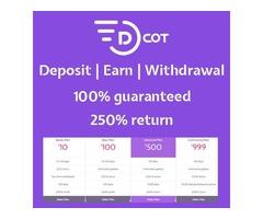 dcotbtc is a new American crypto service providing company