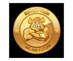 Choose Bitbullcoin ICO