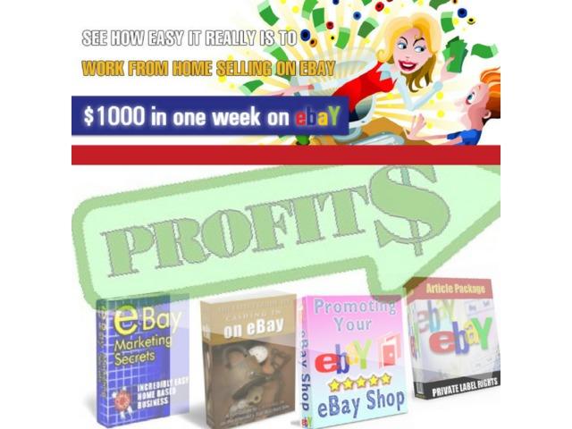 45 Ebay Guidesinside Infotemplatesmini Sitespdf Auctions