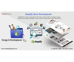 Shopify Developer India