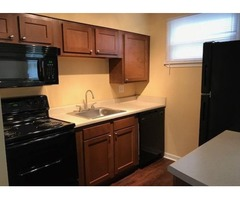 Newly Renovated 1 Bedroom Near Downtown Macon!