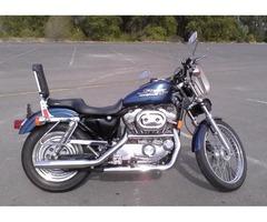 Harley Davidson 1998 883 sportster
