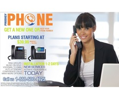 Simple, Flexible and Cost-Effective Phone Service for you company!