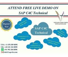 SAP C4C Technical Online Training USA