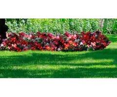 Master Landscaping Sprinklers LLC