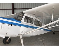 1979 Bellanca Scout For Sale