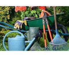 Ramon Gardening Services