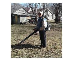 Yard clean-up leaf removal