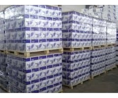 Quality double A A4, Rotatrim and Typek a4 papers for sale at very good price