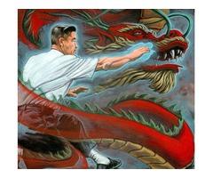Personal Martial Arts Kung Fu/Tai Chi Chuan training