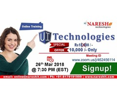 UI Technologies Online Training in the USA with Special Offer - NareshIT
