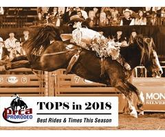 Midwest Horse Fair - PRCA Rodeo 2018 - TixBag