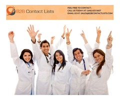 B2B Contact Lists in USA