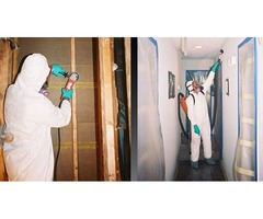 Best Mold Remediation Contractors, Basement Waterproofing in USA- Pure service pro