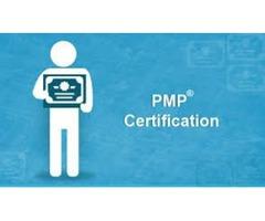 Program Management Professional (PMP) Certification Training