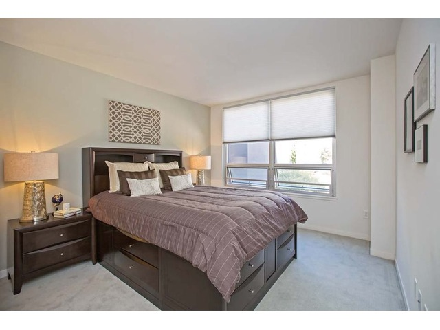 SPACIOUS 1 BEDROOM APARTMENT IN SAN FRANCISCO - Houses ...