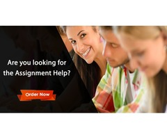 Online Academic Assignment Help