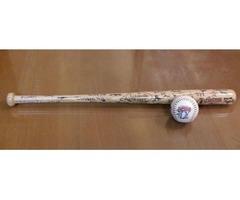 Boys / Boy's Small Louisville Slugger Baseball and Bat
