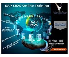 SAP MDG Training in USA