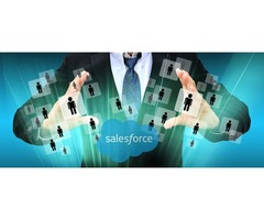 SALESFORCE USERS EMAIL DATABASE-TECHNOLOGY DATA SERVICES
