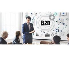 B2B Campaign Services | B2B Marketing Campaign | Leo Data Services